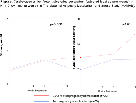 Abstract P319: Do Pregnancy Complications Elevate Cardiovascular