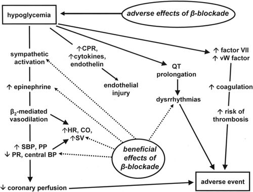 Long-Standing Problem of β-Blocker–Elicited Hypoglycemia in