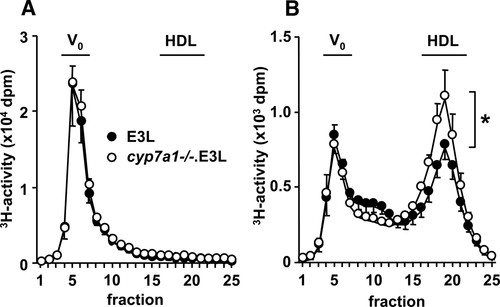 Cholesterol 7α-Hydroxylase Deficiency in Mice on an APOE*3
