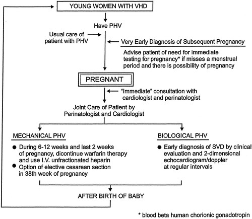Prosthetic Heart Valves and Pregnancy | Circulation