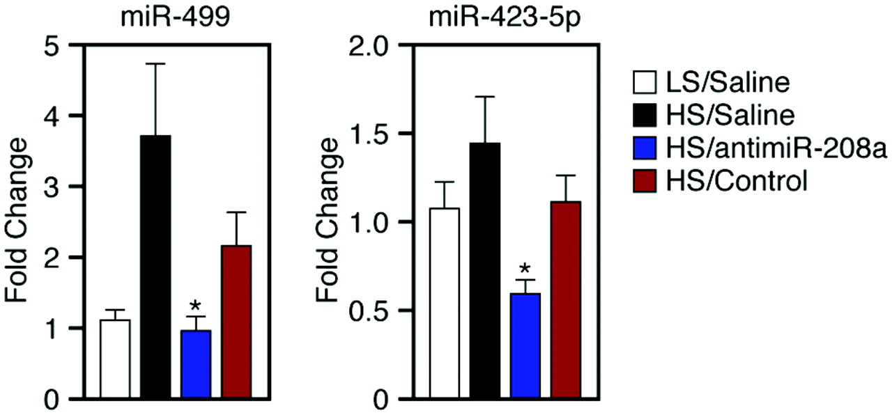 Therapeutic Inhibition of miR-208a Improves Cardiac Function