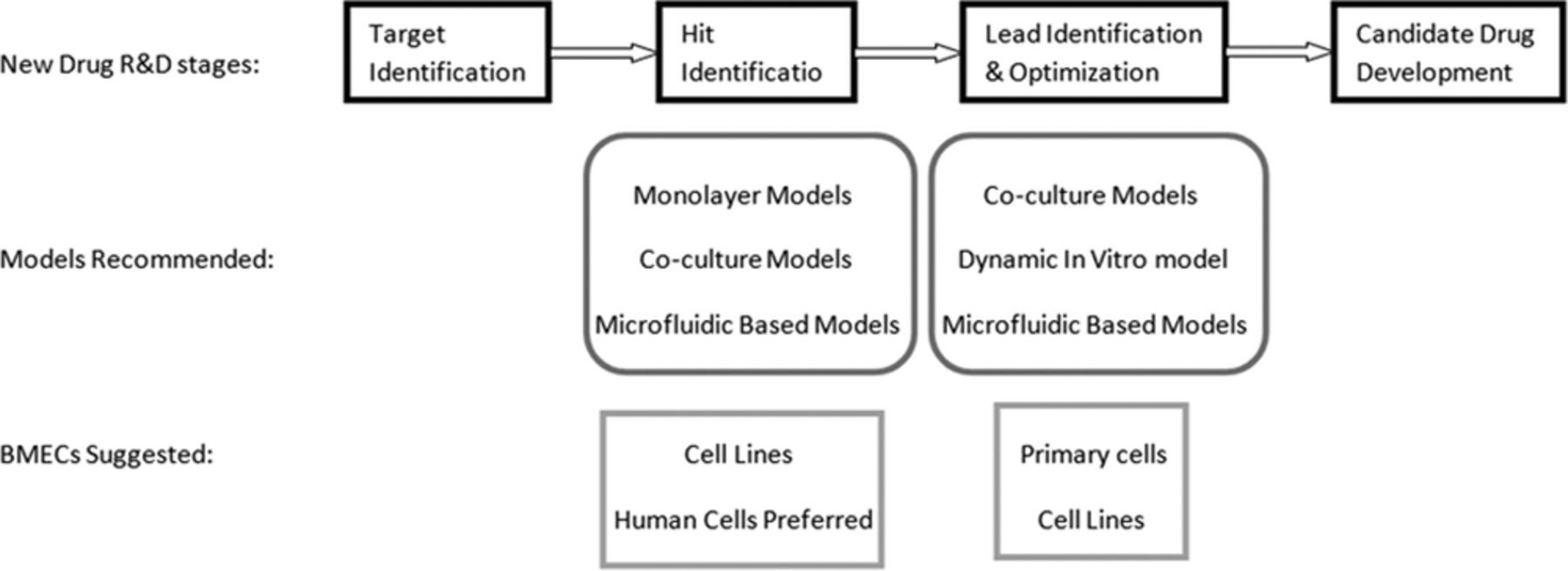 Cell-Culture Models of the Blood–Brain Barrier | Stroke
