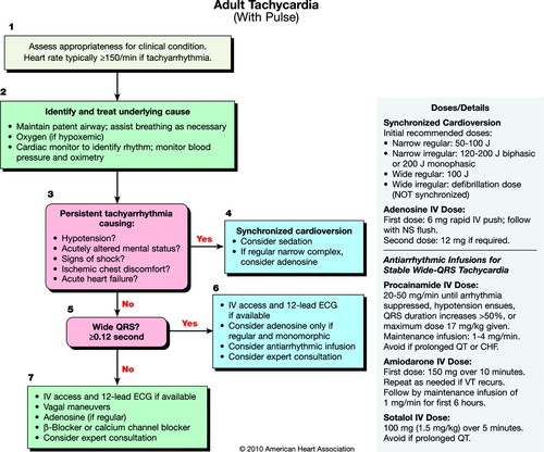 Part 8 Adult Advanced Cardiovascular Life Support Circulation