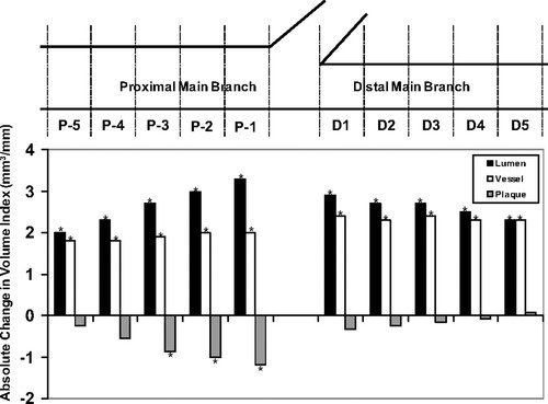 Anatomic and Functional Evaluation of Bifurcation Lesions Undergoing