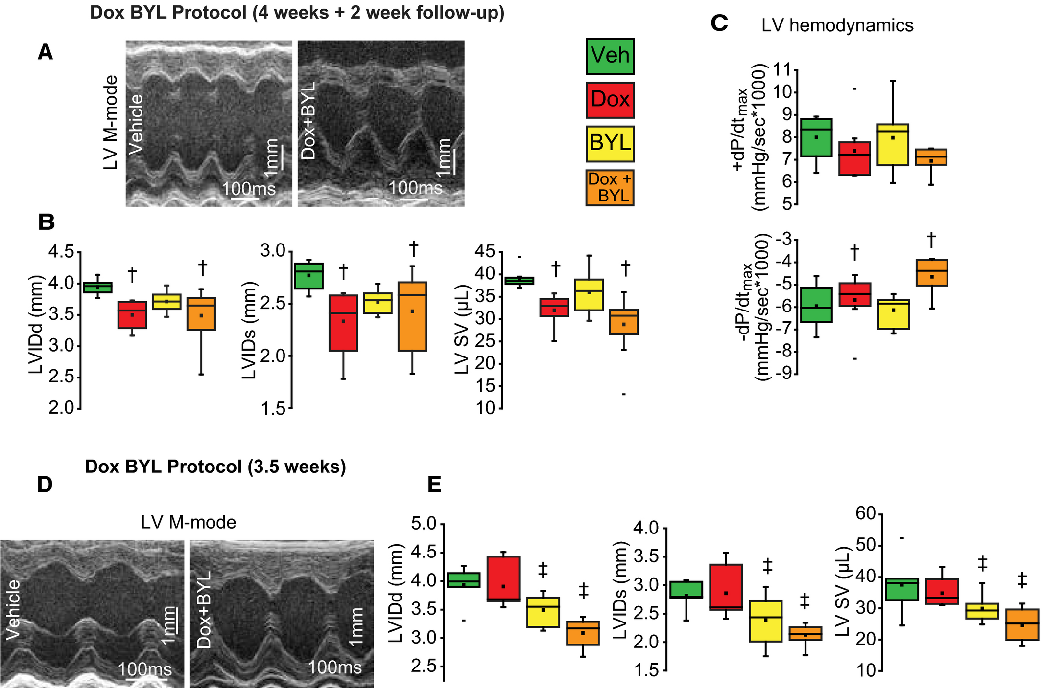 PI3Kα Pathway Inhibition With Doxorubicin Treatment Results in