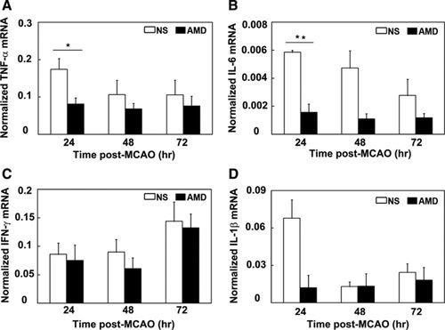 CXCR4 Antagonist AMD3100 Protects Blood–Brain Barrier