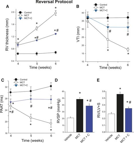 NADPH Oxidase 4 Is Expressed in Pulmonary Artery Adventitia and