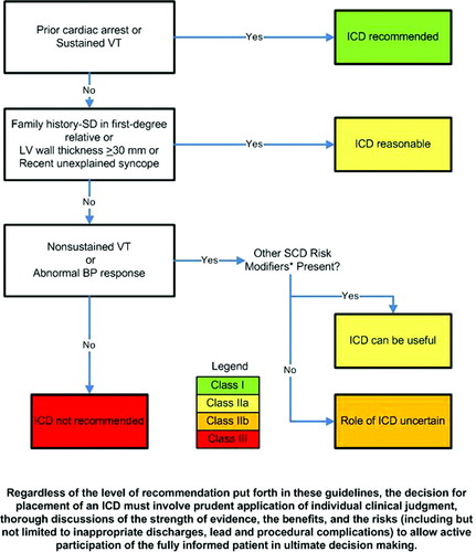 2011 ACCF/AHA Guideline for the Diagnosis and Treatment of
