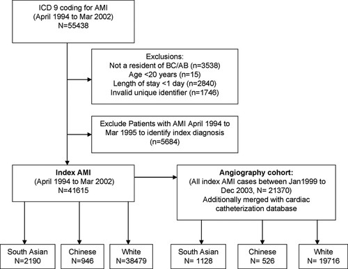 Outcomes After Acute Myocardial Infarction in South Asian