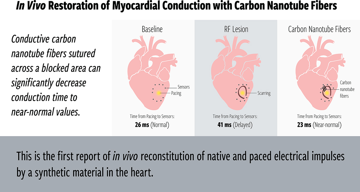 In Vivo Restoration of Myocardial Conduction With Carbon