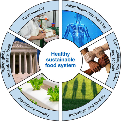 Innovation to Create a Healthy and Sustainable Food System