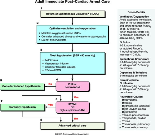 Part 9: Post–Cardiac Arrest Care | Circulation
