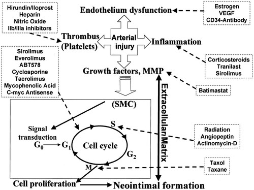 New Frontiers in Cardiology | Circulation