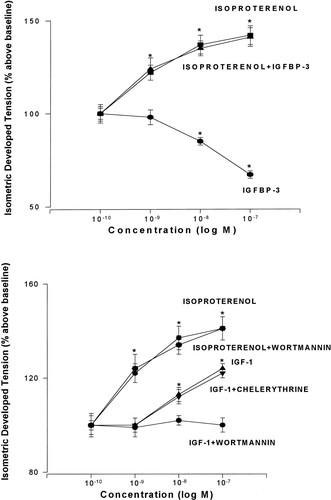 Insulin-like Growth Factor-1 but Not Growth Hormone Augments