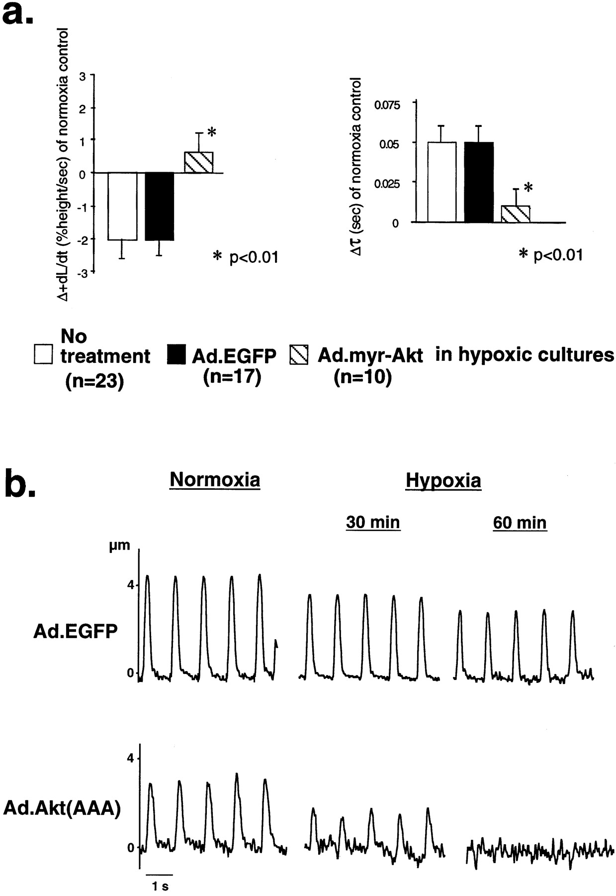 Akt Activation Preserves Cardiac Function and Prevents