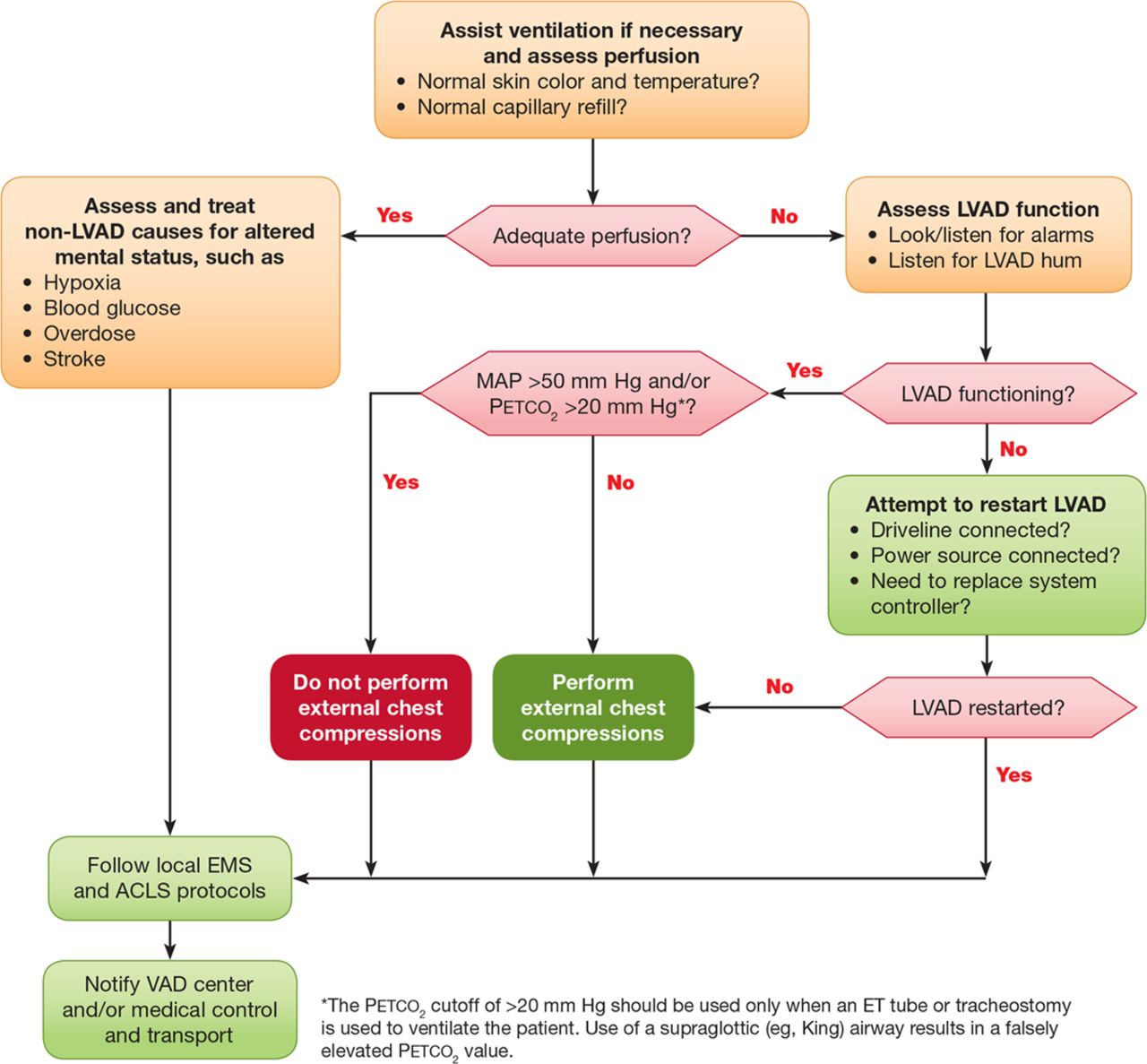 Cardiopulmonary Resuscitation in Adults and Children With