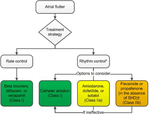 2015 ACC/AHA/HRS Guideline for the Management of Adult Patients With