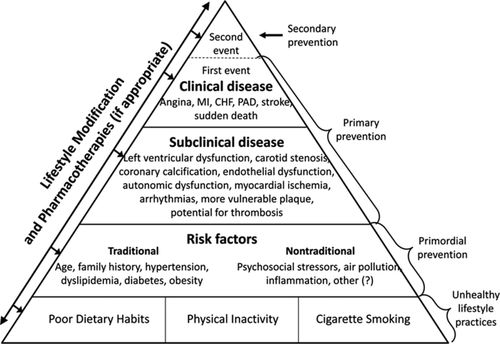 Preventing Exercise-Related Cardiovascular Events | Circulation