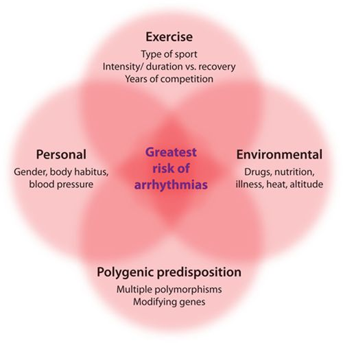 Can Intensive Exercise Harm the Heart? | Circulation