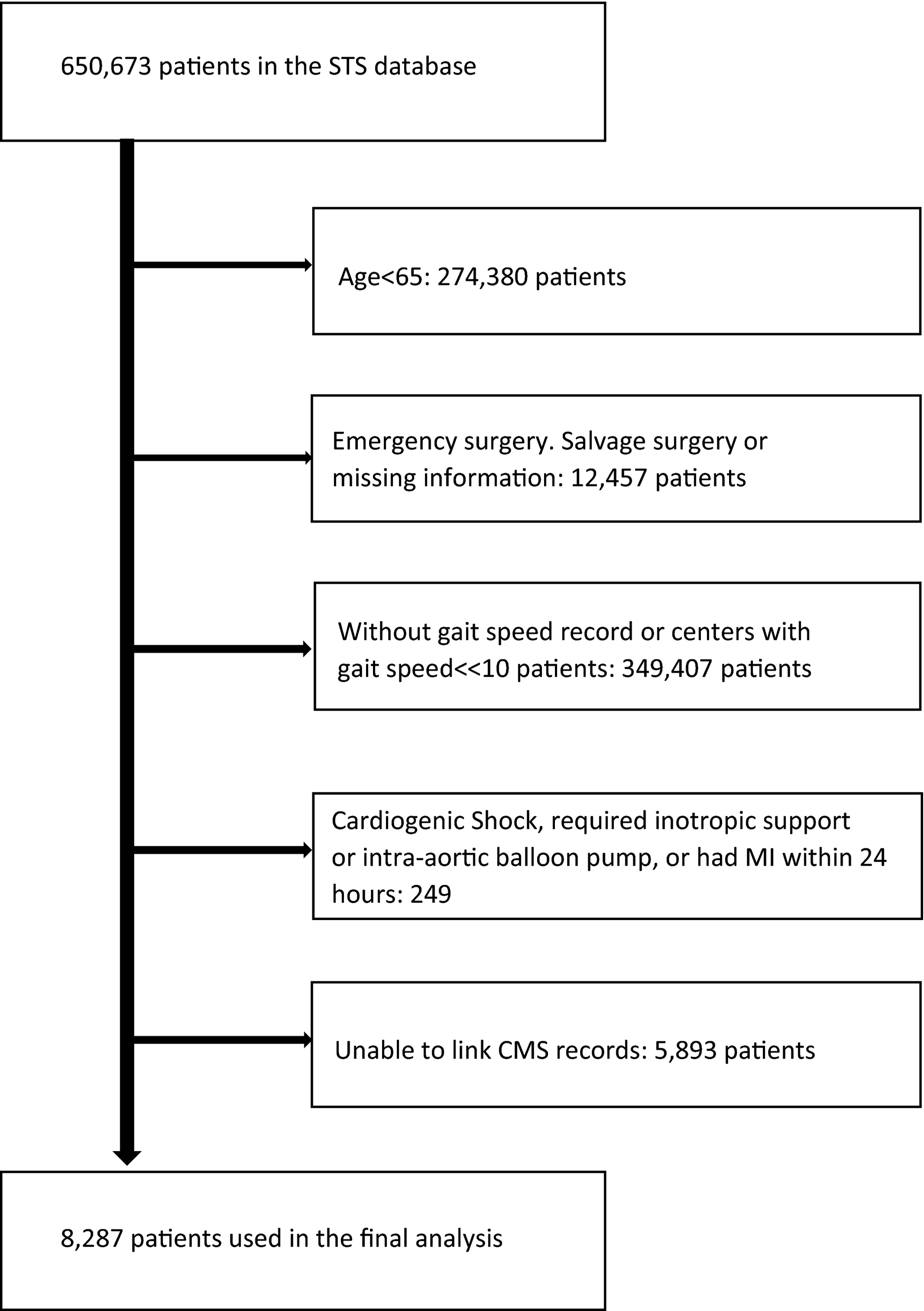 Gait Speed and 1‐Year Mortality Following Cardiac Surgery: A