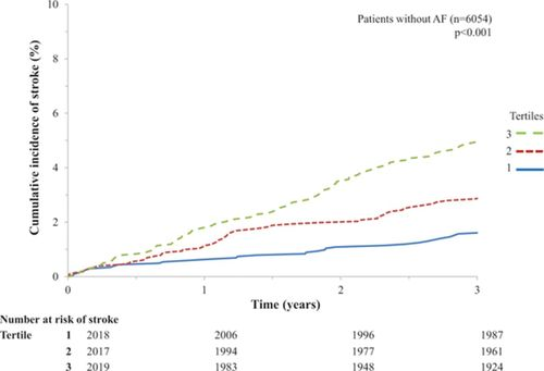 Risk of Stroke in Chronic Heart Failure Patients Without